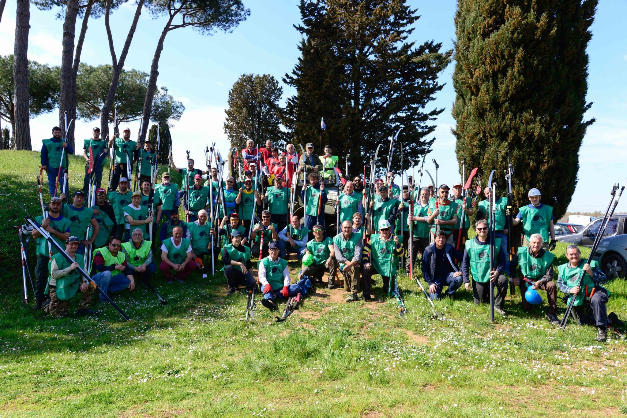 XII Campionato Regionale di Potatura dell'Olivo a Vaso Policonico